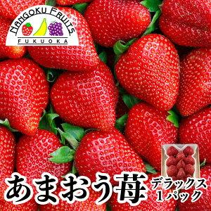 【送料無料】福岡産 あまおう苺 デラックス 1パック