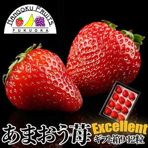 【送料無料】福岡産 あまおう苺 エクセレント 1箱(9-12粒)