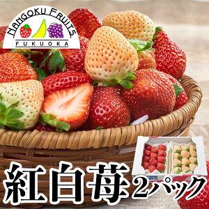 【送料無料】福岡産 紅白いちご (あまおう&白いちご)2パック