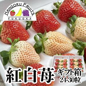 【送料無料】福岡産 紅白いちご (あまおう&白いちご)ギフト箱(24-30粒)