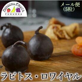 【送料無料・メール便】ラビトス・ロワイヤル (チョコ無花果) 5粒入