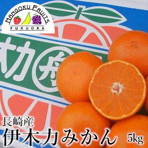【予約販売・送料無料】長崎産 伊木力みかん 約5kg箱