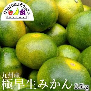 【送料無料】九州産 極早生みかん 2.5kg箱