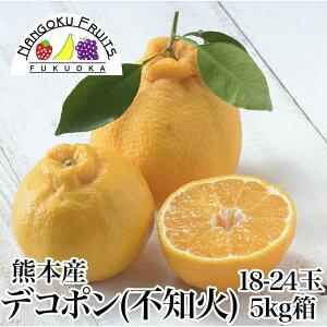 【送料無料】熊本産 デコポン(不知火)約5kg箱 (18-24玉)