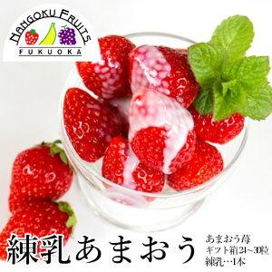 【予約販売・送料無料】練乳あまおういちご24-30粒ギフト箱・甘さ『増量』