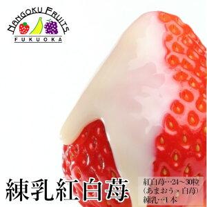 【予約販売・送料無料】練乳紅白いちご24-30粒ギフト箱・甘さ『増量』