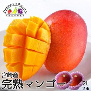 【送料無料】宮崎産 完熟マンゴー2L2玉(約350gx2玉)