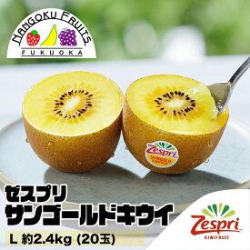 【送料無料】 ゼスプリ・サンゴールドキウイ L 約2.4kg(20玉)