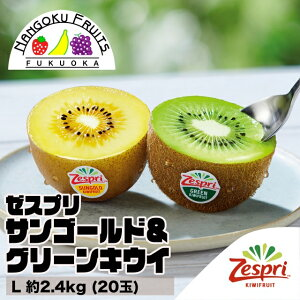 【送料無料】ゼスプリ・キウイフルーツ サンゴールド&グリーンキウイ L 約2.4kg(20玉)