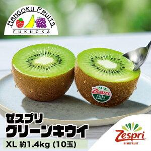 【送料無料】 ゼスプリ・グリーンキウイ XL 約1.4kg(10玉)
