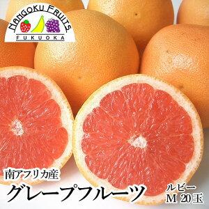 【送料無料】南アフリカ産グレープフルーツ・ルビーM20玉
