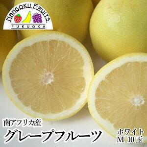 【送料無料】南アフリカ産 グレープフルーツ・ホワイトM10玉