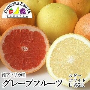 【送料無料】南アフリカ産グレープフルーツ ルビー&ホワイトL10玉