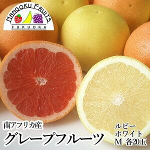 【送料無料】南アフリカ産 グレープフルーツ ルビー&ホワイトM20玉