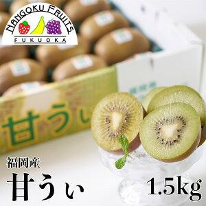 【予約販売・送料無料】福岡産 キウイ 甘うぃ 約1.5kg箱