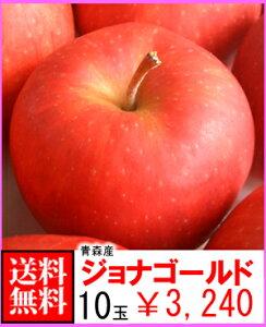 【送料無料】青森産 ジョナゴールド 10玉