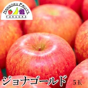 【送料無料】青森産 ジョナゴールド 5玉