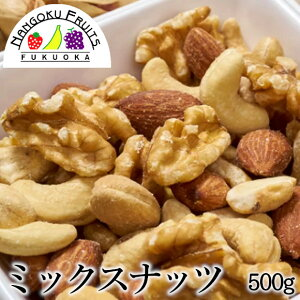 【送料無料】 素焼きミックスナッツ 500g
