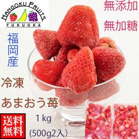 送料無料 福岡産冷凍あまおう苺(いちご)1kg (500g 2袋入) 無添加 冷凍いちご