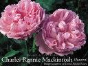 Mackintosh800600