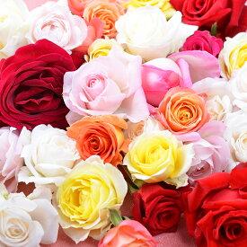 バラ風呂 生花 ローズバス 薔薇 バラ 送料無料 ギフト プレゼント ホワイトデー 誕生日 御祝 フラワーシャワー