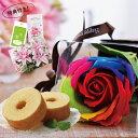 Rainbowbaumu1