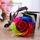 Rainbowsoap 1