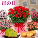 母の日 プレゼント カーネーション と お菓子のセット 選べる 花とスイーツ 抹茶ケーキや函館チーズタルト