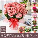 220位:園芸専門店が選ぶ母の日ギフト・アジサイ・胡蝶蘭などめずらしい季節の鉢花B