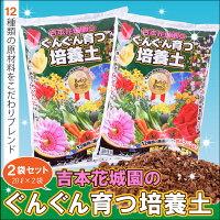 園芸専門店が作った土です。吉本花城...