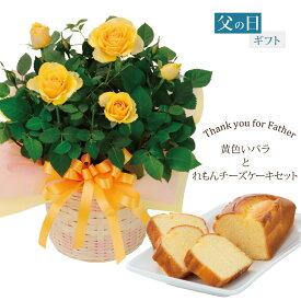 父の日 ギフト プレゼント 植物 花 幸せの黄色いバラ 鉢植えとれもんチーズケーキセット 2021