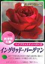 Rose 103