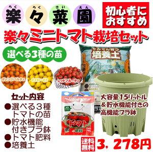 楽々菜園ミニトマト栽培セット トマト苗1、菜園丸型380鉢1、トマト肥料1、ぐんぐん培養土1 【ご予約品 4月中旬以降お届け】