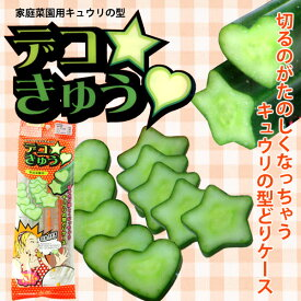 家庭菜園用 キュウリの型 デコきゅう ハート&星のセット きゅうりの型