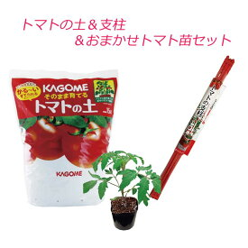 トマト 栽培セット そのまま育てる トマトの土 15L 専用支柱 おまかせトマト苗 野菜苗 【ご予約品 4月中旬以降お届け】