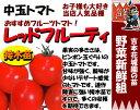 Tomato t 05
