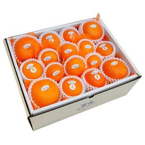 季節の柑橘詰め合わせセット10,500円