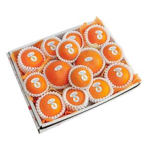 季節の柑橘詰め合わせセット5,500円