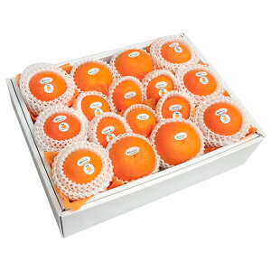 季節の柑橘詰め合わせセット8,500円
