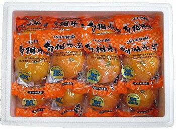 冷凍みかん・旬柑氷結(しゅんかんひょうけつ)愛媛みかん×12個セット【通販】【販売】