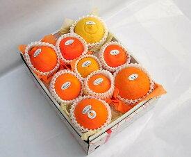 【送料無料】季節の柑橘詰合せセット3,000円