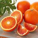 国産(愛媛産)!ワケありブラッドオレンジ(タロッコ)約3kg