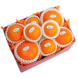 季節の柑橘詰め合わせセット3,500円