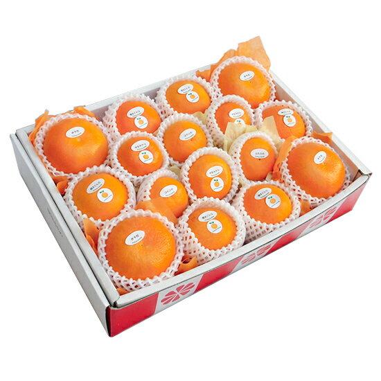 季節の柑橘詰め合わせセット6,500円【12月15日頃〜順次出荷予定】