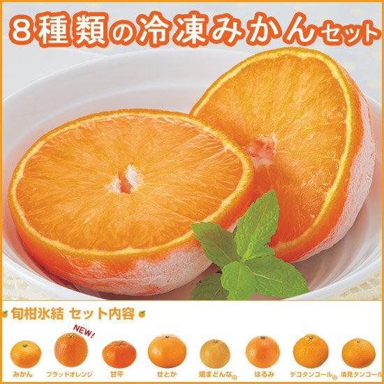 冷凍みかん・旬柑氷結・プレミアム8種セット(8個入)<全8種類>(個包装)