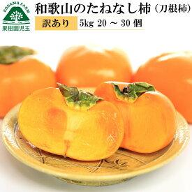 和歌山のたねなし柿(刀根早生柿)訳あり家庭用5kg 20〜30個前後 柿 送料無料 かき カキ 訳あり わけあり ワケあり