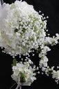 【楽ギフ_包装】【花冠・ブーケ・ブートニア3点セット】かすみ草ホワイト