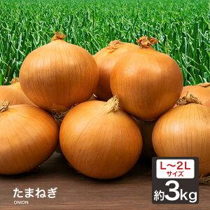 【あす楽対応】たまねぎ 3kg 北海道産 L〜2L 玉葱 ご家庭用 大量 野菜 北海道産 玉ねぎ