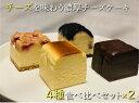 【送料無料】濃厚チーズケーキ 4種食べ比べセット8個入りR