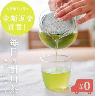 毎日の掛川茶